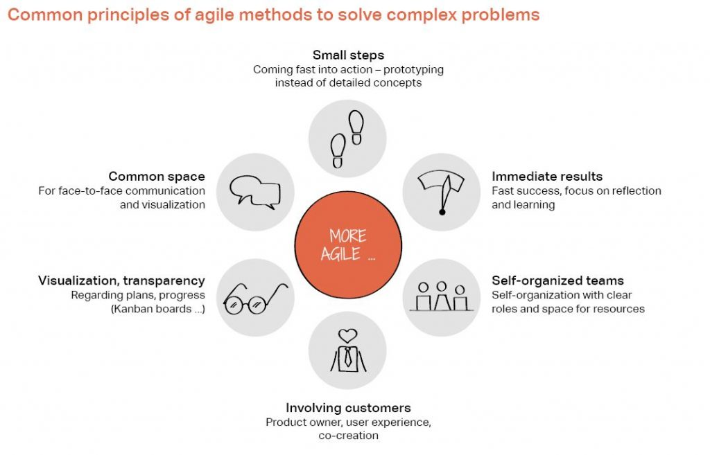 Common principles of agile methods to solve complex problems: Small steps, Immediate results, Self-organized teams, Involving customers, Visualization, transparency, Common space
