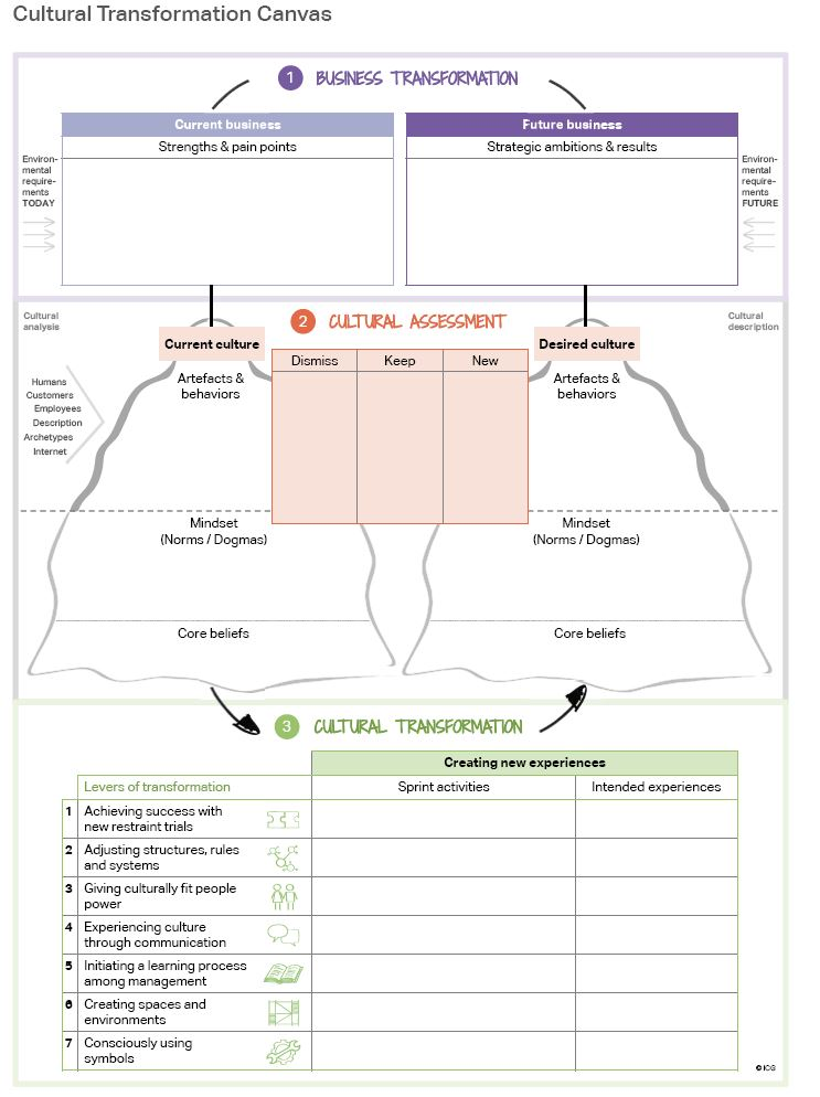Cultural Transformation Canvas: Business transformation, Cultural Assessment, Cultural Transformation.