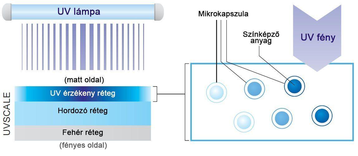 UVScale struktúra